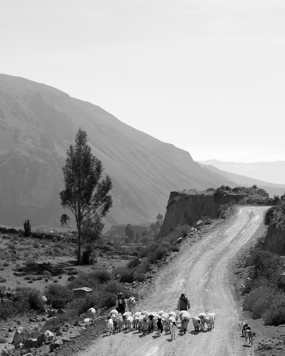 GH_TRAVEL_PERU_colca_canyon_29